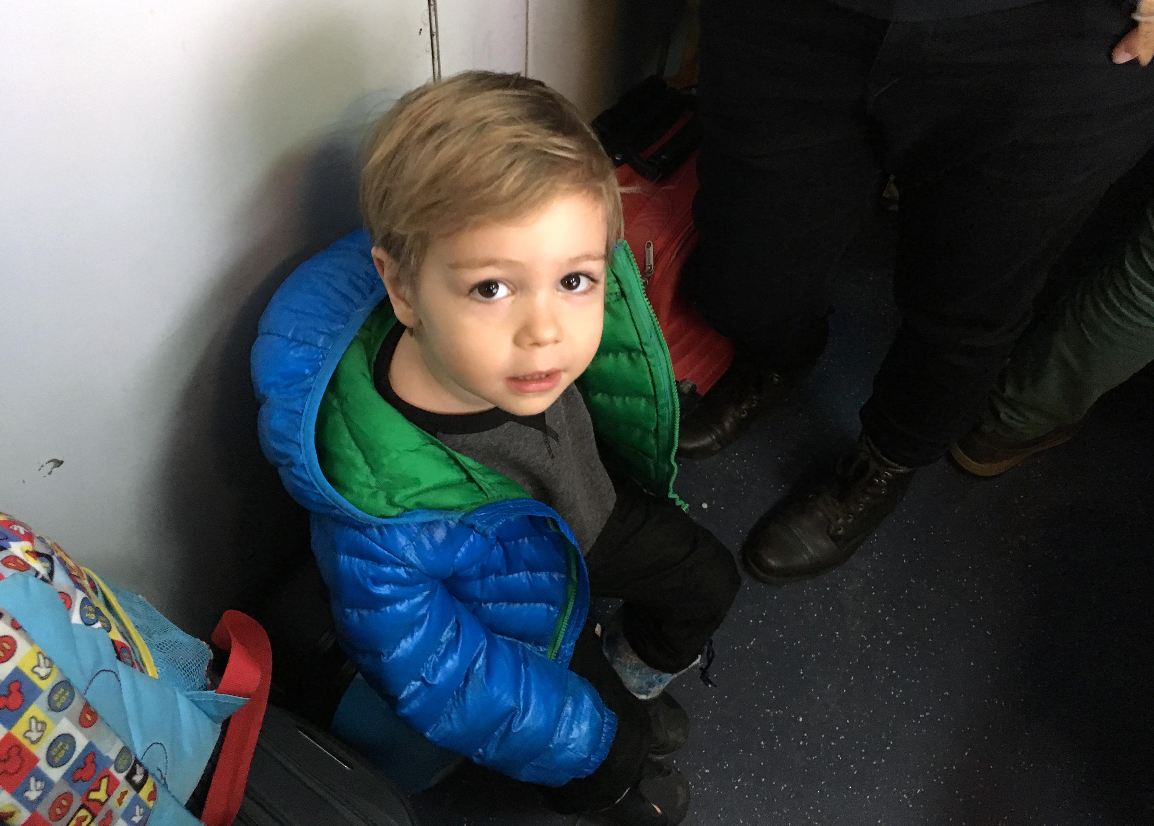 Tudor in tren