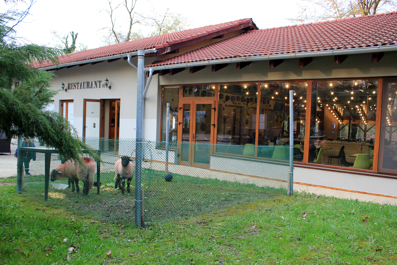 restaurant complex arsenal park orastie exterior