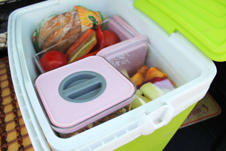 lada frigorifica picnic cutii depozitare neoflam mega image