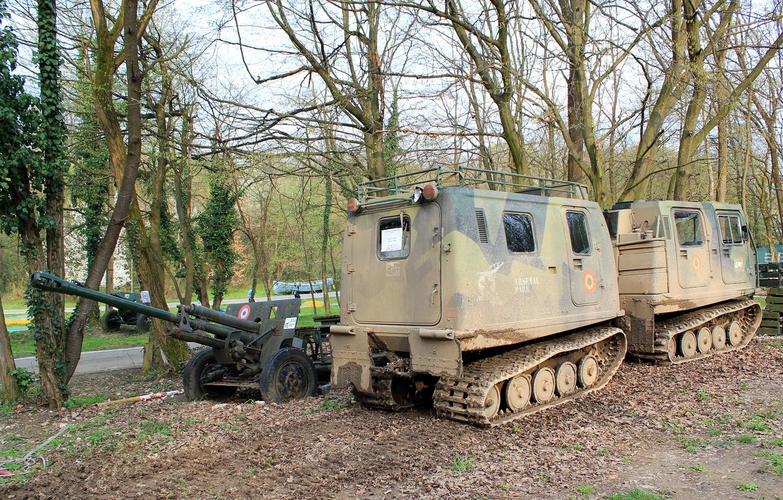 tancuri arsenal park orastie