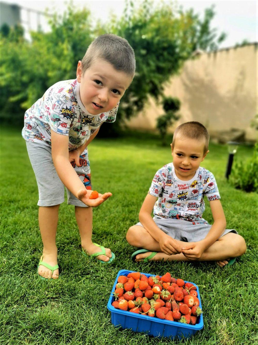 gustare copii adulti fructe caspune